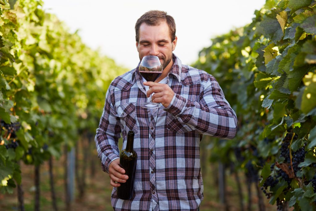 Consumer and Sensory Science in the Wine Industry