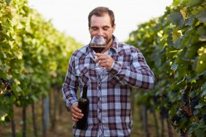 Consumer & Sensory Science in the Wine Industry | Sirocco Consulting