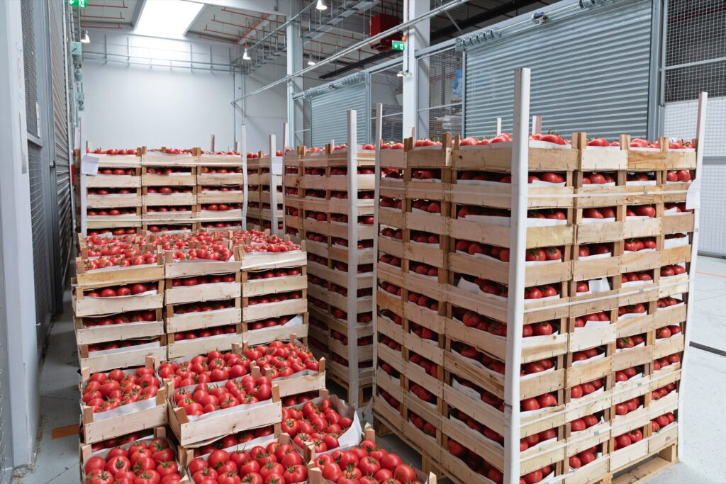 Crates of tomatoes ready to be imported