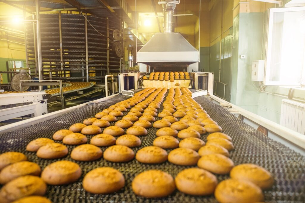 Cakes on food factory conveyor belt